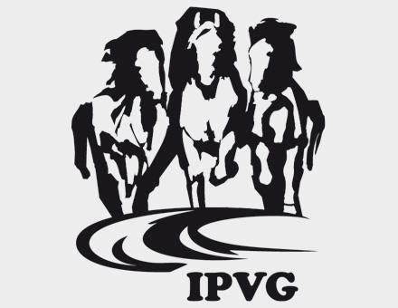 IPVG_Logo2