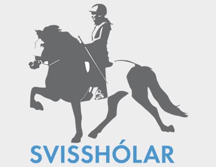 svissholar_hoch3